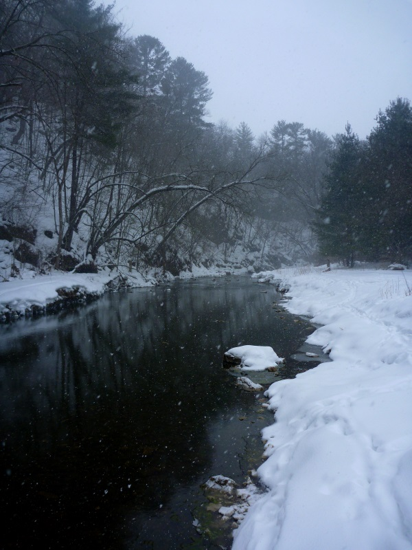 The Creek In the Snow