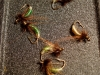Barr&amp;#039;s Graphic Caddis tied by the W.F.F.