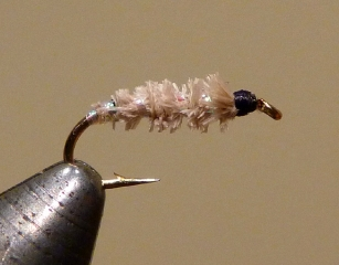 Cased Caddis Larva (Un-Colored)