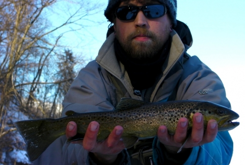 The W.F.F. and A Brown Trout