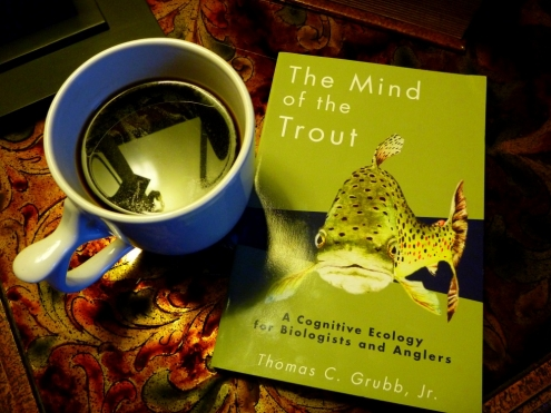 The Mind of the Trout by Thomas Grubb. Jr