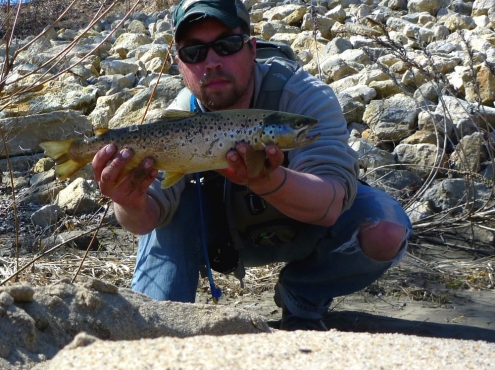 19inch Driftless Area Brown