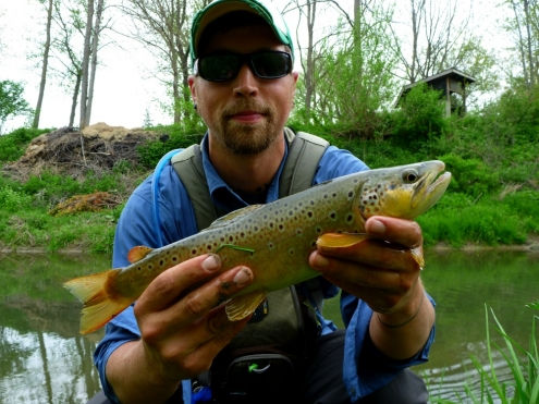 The Driftless Area Smile Caused by Brown Trout