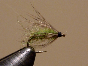 #16 Free Range Soft-Hackle (Caddis Green)