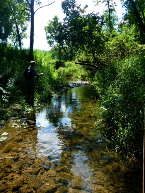 Searching New Driftless Water