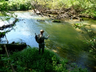 Sershen and the Creek