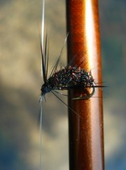 The B.W.F. (Black Wet Fly)