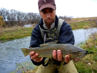 W.F.F. with an Iowa Brown