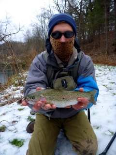 The W.F.F. and a Rainbow Trout