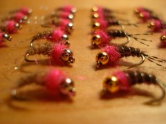 Pink Patrick and Pink Page Flies