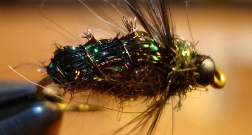 The Black Wet Fly