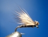 Grey Caddis tied by the W.F.F.