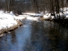 The Trout Stream