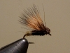 Two-Toned Chubby No Hackle Elk Hair Caddis