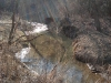 Driftless Area Stream