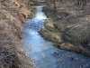 The Stream