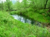 Driftless Trout Water