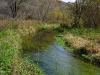 Driftless Area Trout Water